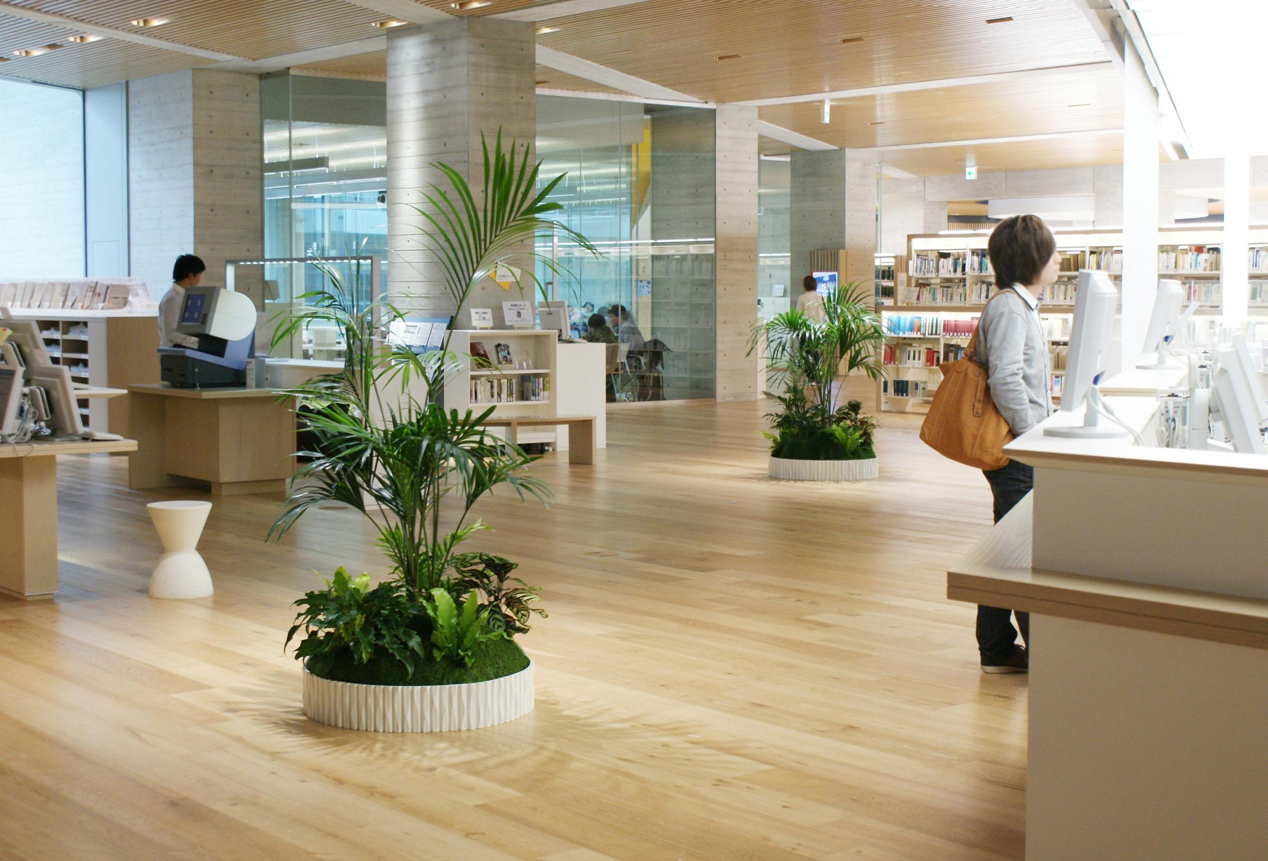 図書館にレンタルグリーンが設置されている例